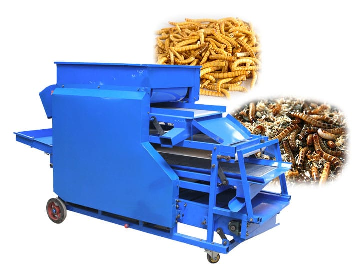 mealworm screening sorting machine application